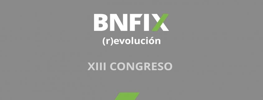 27445_BNFIX_CONGRESO_PANTALLA