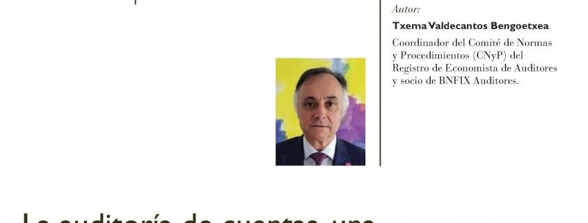 Revista Tecnica Contable y Financiera_TXEMA VALDECANTOS_1