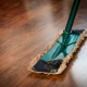 cleaning-washing-cleanup-the-ilo-48889 limpieza